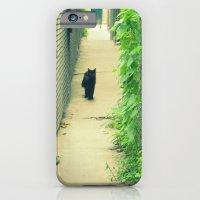 Black Cat With Gangway Ivy  iPhone 6 Slim Case