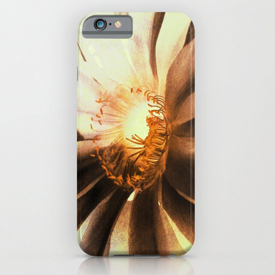 Kaktus Flower iPhone & iPod Case