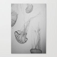 Descending Jellies Canvas Print