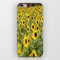 gay flowers or something iPhone & iPod Skin