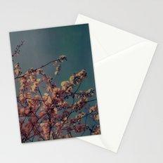 Cherry Blossoms, Polaroid Stationery Cards