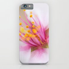 Magenta Stamen iPhone 6 Slim Case