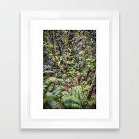 Rainforest Jungle Framed Art Print