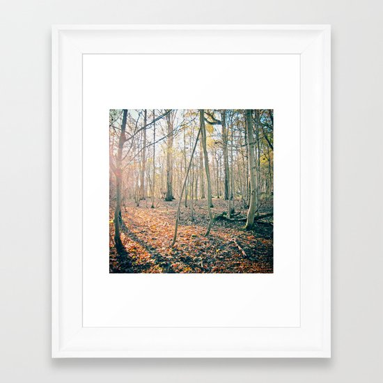 The Forest Framed Art Print