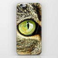 Emerald Cat Eyes iPhone & iPod Skin