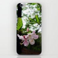 Secret Garden 19 iPhone & iPod Skin