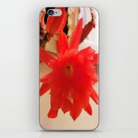 Blooming Lovely iPhone & iPod Skin