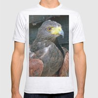 Harris Hawk Mens Fitted Tee Ash Grey SMALL