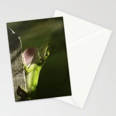 Mating Dance Stationery Cards