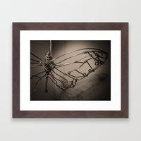 Broken Butterfly  Framed Art Print