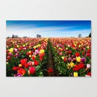 Coloring Vanishing Point, Tulip Festival in Woodburn, Oregon Canvas Print
