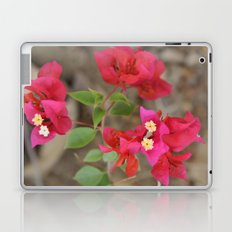 pretty  Laptop & iPad Skin