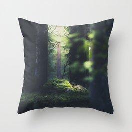 Throw Pillow - Never trust a fairy - HappyMelvin