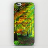 Sunlit Trees iPhone & iPod Skin