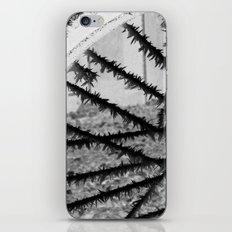 Winter spoke its intentions... iPhone & iPod Skin