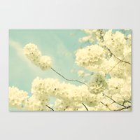 The Blossom And The Bee Canvas Print