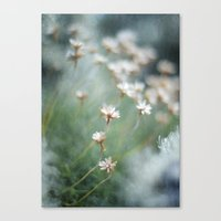 To The Right Canvas Print