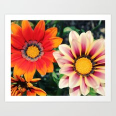 two are better! Art Print
