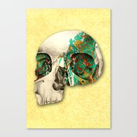 Skull2 Canvas Print