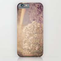 Sunlight iPhone 6 Slim Case