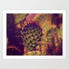 Gentle Thorns Art Print