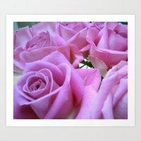 Popillo Roses 01 Art Print