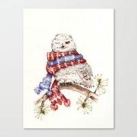 Winking Arctic Owl In Sc… Canvas Print