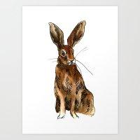 Alert Hare Art Print
