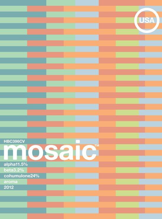 mosaic single hop Canvas Print
