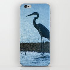 Great Blue Heron Fishing iPhone & iPod Skin