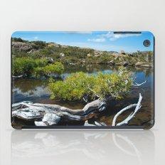 Alpine Moore iPad Case