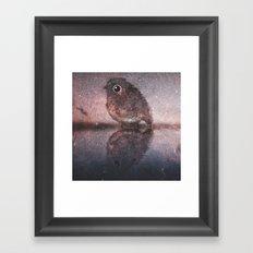 bird-870 Framed Art Print