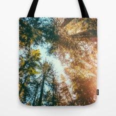 California Redwoods Sun-rays and Sky Tote Bag
