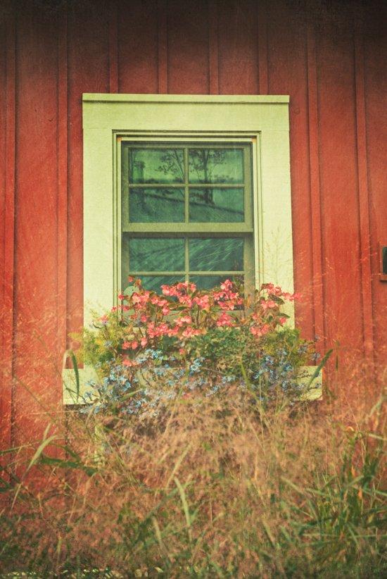 White Window on Red House Art Print