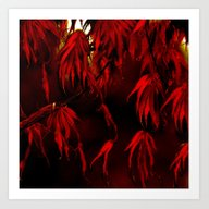 RED, RED AUTUMN Art Print