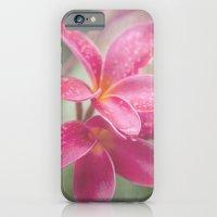 The Temple Tree iPhone 6 Slim Case