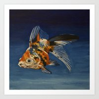 Calico Goldfish Art Print