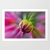 Flower In Bloom Art Print