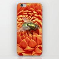 Little Fly Macro XIV iPhone & iPod Skin