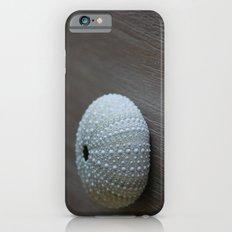 Sea Urchin iPhone 6 Slim Case