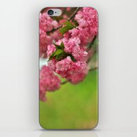 Cherry Orchard iPhone & iPod Skin