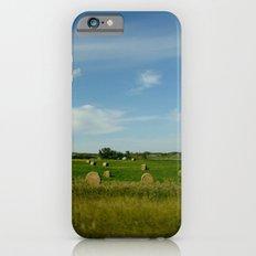 Summertime in WaterValley iPhone 6s Slim Case
