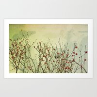 Winter Berries Art Print