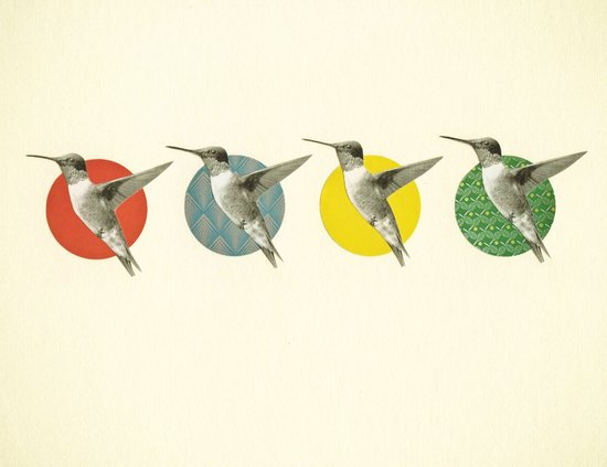 The Hummingbird Dance Art Print