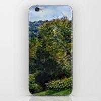 Edge Of The Vineyard iPhone & iPod Skin