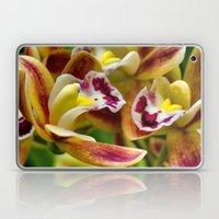 Three Orchids  Laptop & iPad Skin
