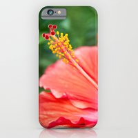 iPhone & iPod Case featuring Tropical Bloom by Masharra Mysti