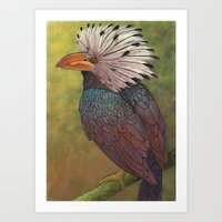 White Crested Hornbill Art Print