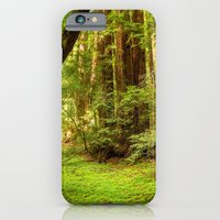 iPhone & iPod Case featuring Muir Woods by Ryan Fernandez Photography