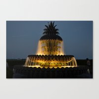 fountain lights Canvas Print